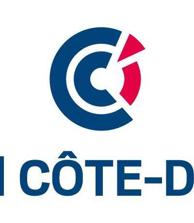 cci21_vertical.jpg